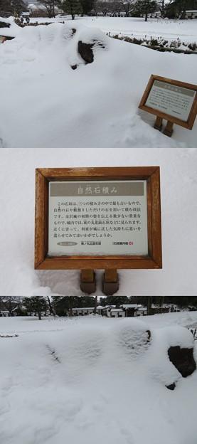 金沢城(石川県営 金沢城公園)鶴丸 ・石垣展示