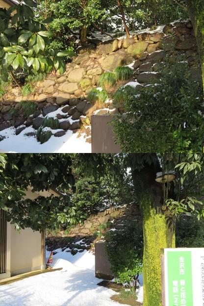 金沢城(石川県営 金沢城公園)百間堀底