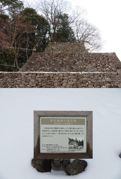 金沢城(石川県営 金沢城公園)辰巳櫓石垣