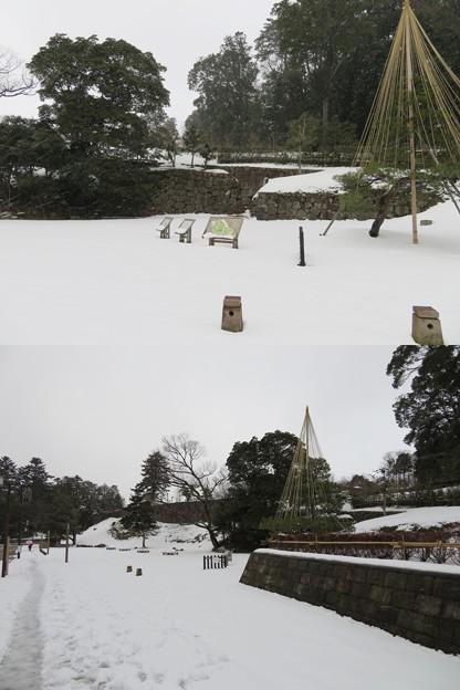 金沢城(石川県営 金沢城公園)玉泉院丸石垣