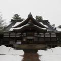 Photos: 尾山神社(金沢市)拝殿