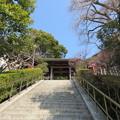 荏柄天神社(鎌倉市)神門