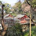 Photos: 荏柄天神社(鎌倉市)本殿