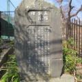 Photos: 永福寺跡(鎌倉市)