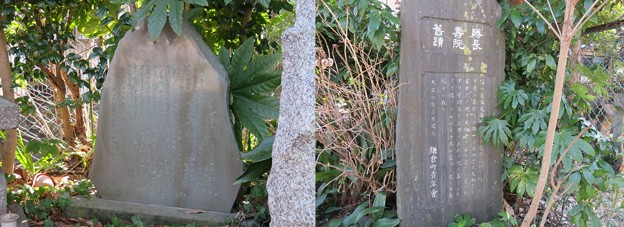 勝長寿院跡(鎌倉市)源義朝・鎌田政清墓