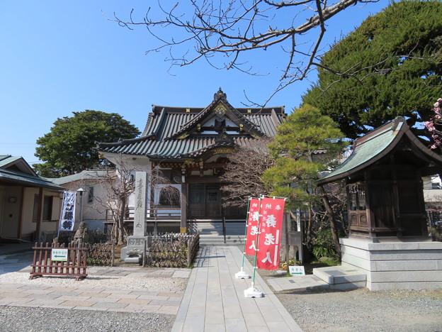 妙隆寺/千葉屋敷跡(鎌倉市)本堂