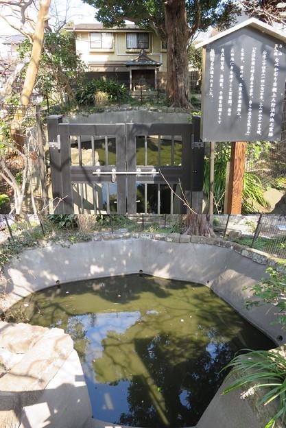 妙隆寺/千葉屋敷跡(鎌倉市)日親百日水行の池