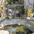 Photos: 妙隆寺/千葉屋敷跡(鎌倉市)日親百日水行の池