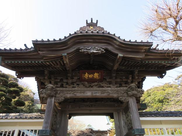 龍口寺(藤沢市)山門