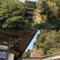 龍口寺(藤沢市)五重塔