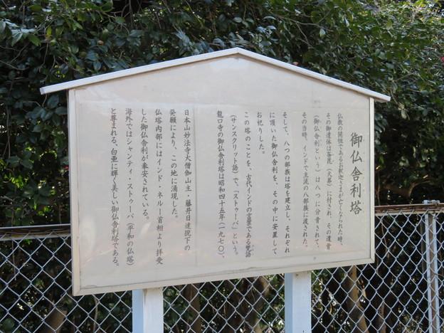 龍口寺(藤沢市)仏舎利塔
