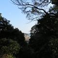 龍口寺(藤沢市)七面堂前より