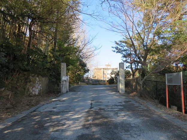 Photos: 多古城/多古陣屋(香取郡多古町立多古第一小学校)
