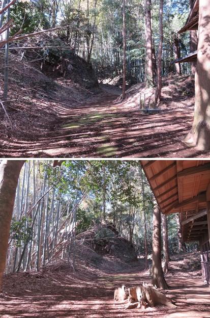 高野神社/飯櫃城(芝山町)櫓台
