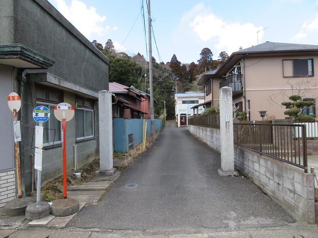 大網城(大網白里市)浅間神社参道