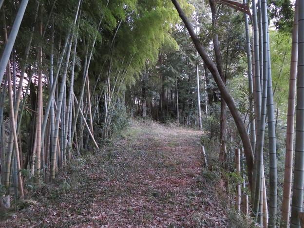 笹子城(木更津市)郭