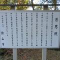 Photos: 慈恩院(館山市)