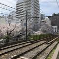 Photos: 18.03.26.豊島区高田