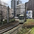 写真: 18.03.26.新宿区西早稲田