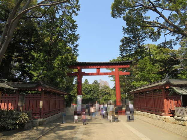 氷川神社(大宮区)三の鳥居