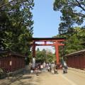 Photos: 氷川神社(大宮区)三の鳥居
