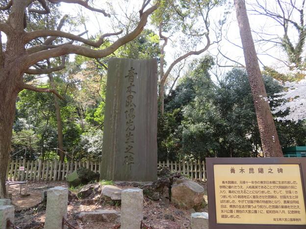 大宮公園(さいたま市大宮区)青木昆陽之碑