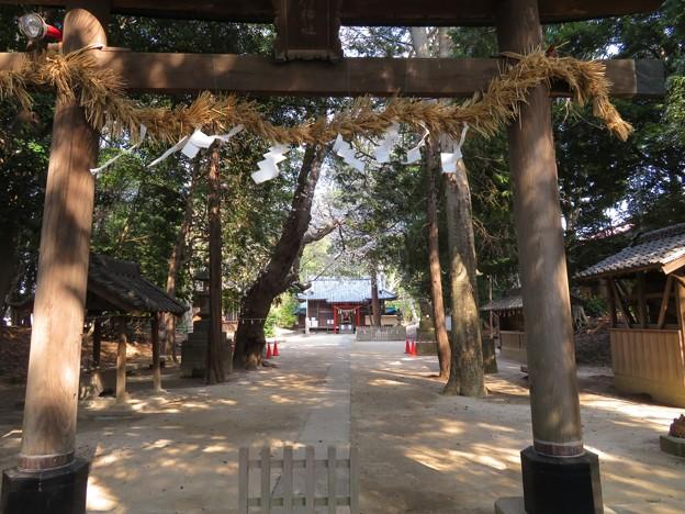 中山神社(見沼区)