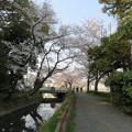 写真: 18.03.28.氷川女体神社前(見沼区)見沼用水?