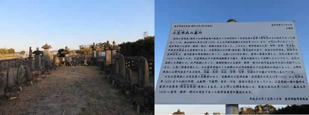 正珊寺(富津市)幡豆小笠原氏墓所
