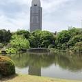 新宿御苑(新宿区)