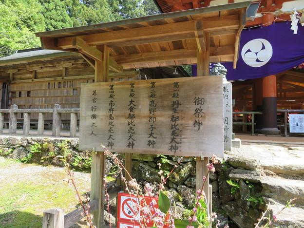 丹生都比売神社(かつらぎ町)