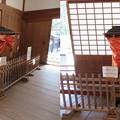 Photos: 高野山真言宗 総本山金剛峯寺(和歌山県)輿
