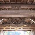 Photos: 櫻池院(高野町)