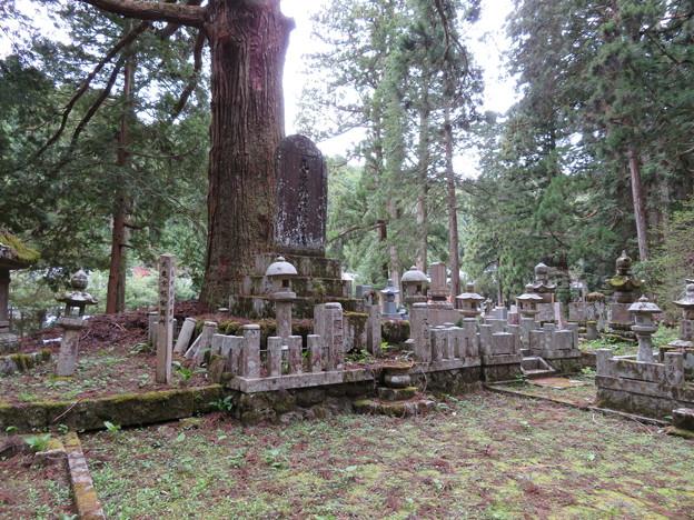 高野山金剛峯寺 奥の院(高野町)丸亀京極家墓所