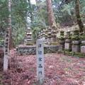 Photos: 高野山金剛峯寺 奥の院(高野町)陸奥津軽家墓所