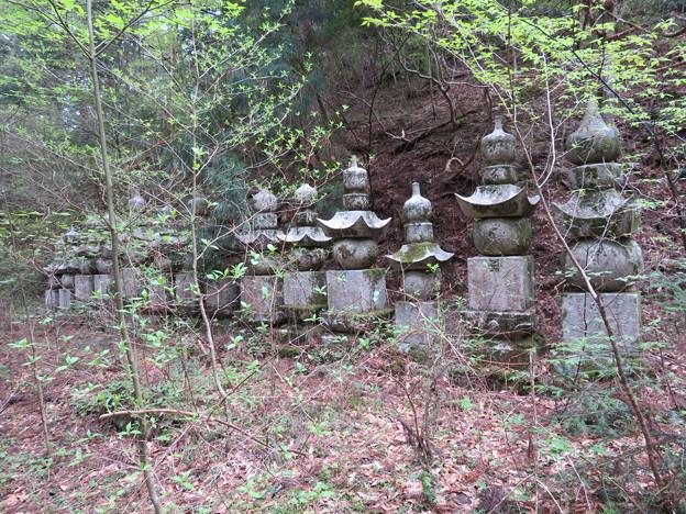 高野山金剛峯寺 奥の院(高野町)彦根井伊家墓所