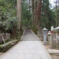 高野山金剛峯寺 奥の院(高野町)覚鑁坂