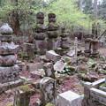 写真: 高野山金剛峯寺 奥の院(高野町)泉州熊取根来家墓所