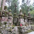 写真: 高野山金剛峯寺 奥の院(高野町)肥前島原松平家墓所