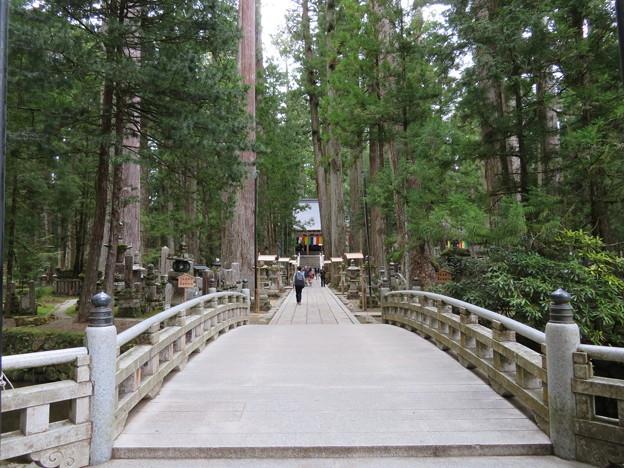 高野山金剛峯寺 奥の院(高野町)御廟橋