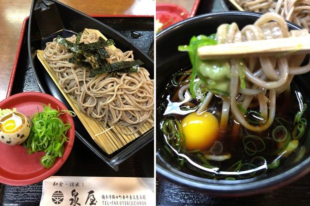 写真: 泉屋食堂(橋本市)