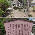 Photos: 長浜城(長浜市)豊國神社 虎石