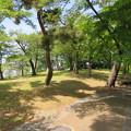 Photos: 長浜城(長浜市)天守跡・豊臣秀吉像