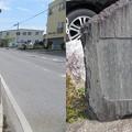 Photos: 長浜城(長浜市)外堀跡北端