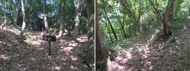 虎御前山城(長浜市)木下秀吉陣跡