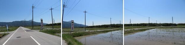 姉川古戦場(長浜市)朝倉軍陣営