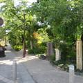 写真: 住吉公園(大垣市)