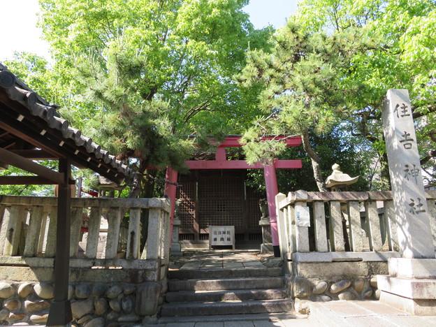 住吉公園(大垣市)住吉神社