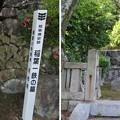 写真: 月桂院(揖斐川町)稲葉一鉄墓
