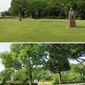 Photos: 曽根城(大垣市営 曽根城公園)